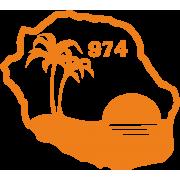 Ile de la Réunion palmier