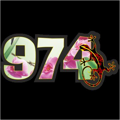 974 Margouillat local 002