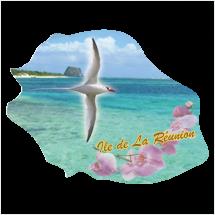 Stickers Réunion Ile numérique