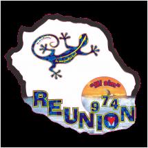 Stickers Réunion Ile numérique découpe