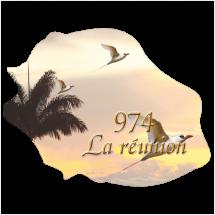 Stickers Réunion Ile numérique 4