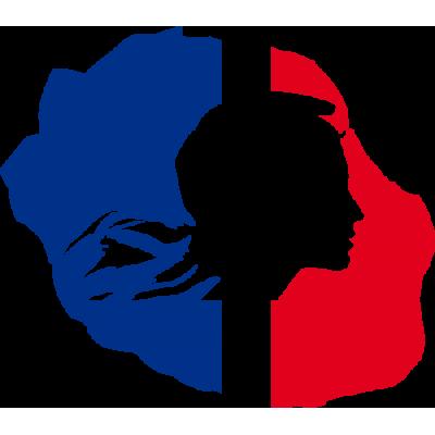 Ile drapeau France