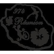 ile de la Réunion hibiscus dodo